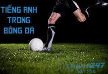 Từ vựng tiếng Anh chủ đề bóng đá